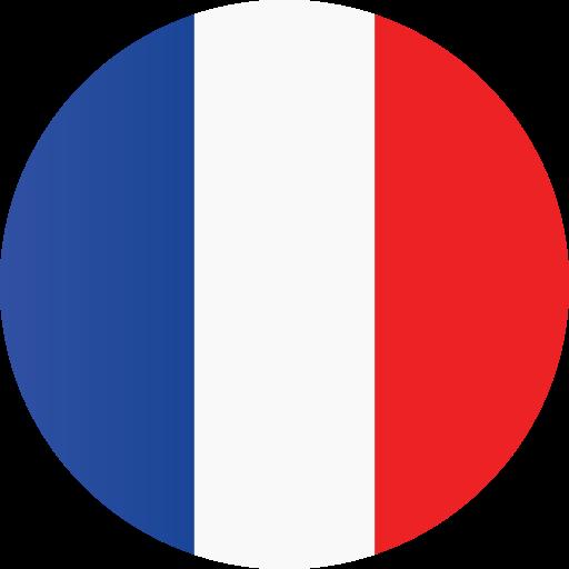 france-flag-icon-9